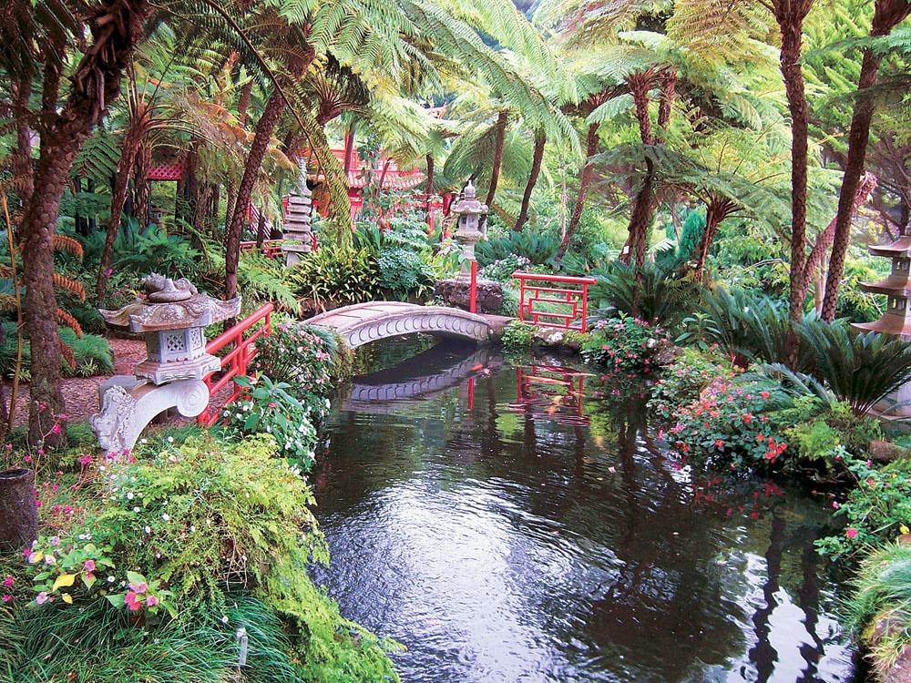 Madeira_zahrada