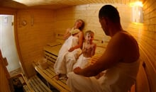 238a_Wellness_Sauna
