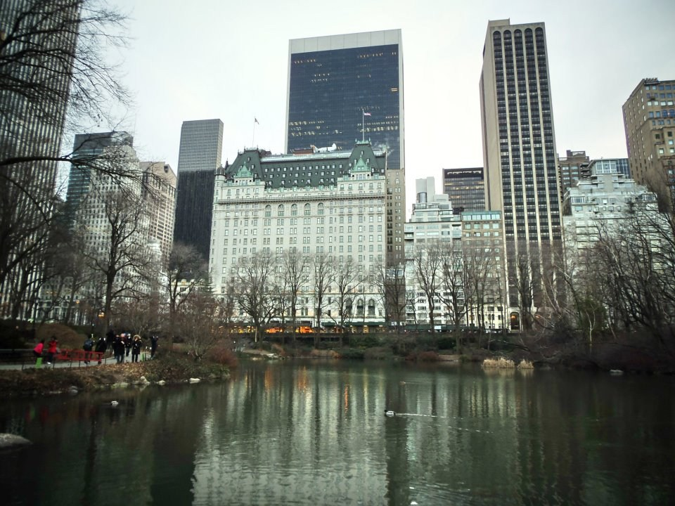 Central Park a hotel Plaza