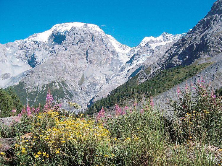Italie - Passo Stelvia 2