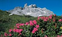 Gortipohl - Montafon - rozkvetlá alpská zahrada ***