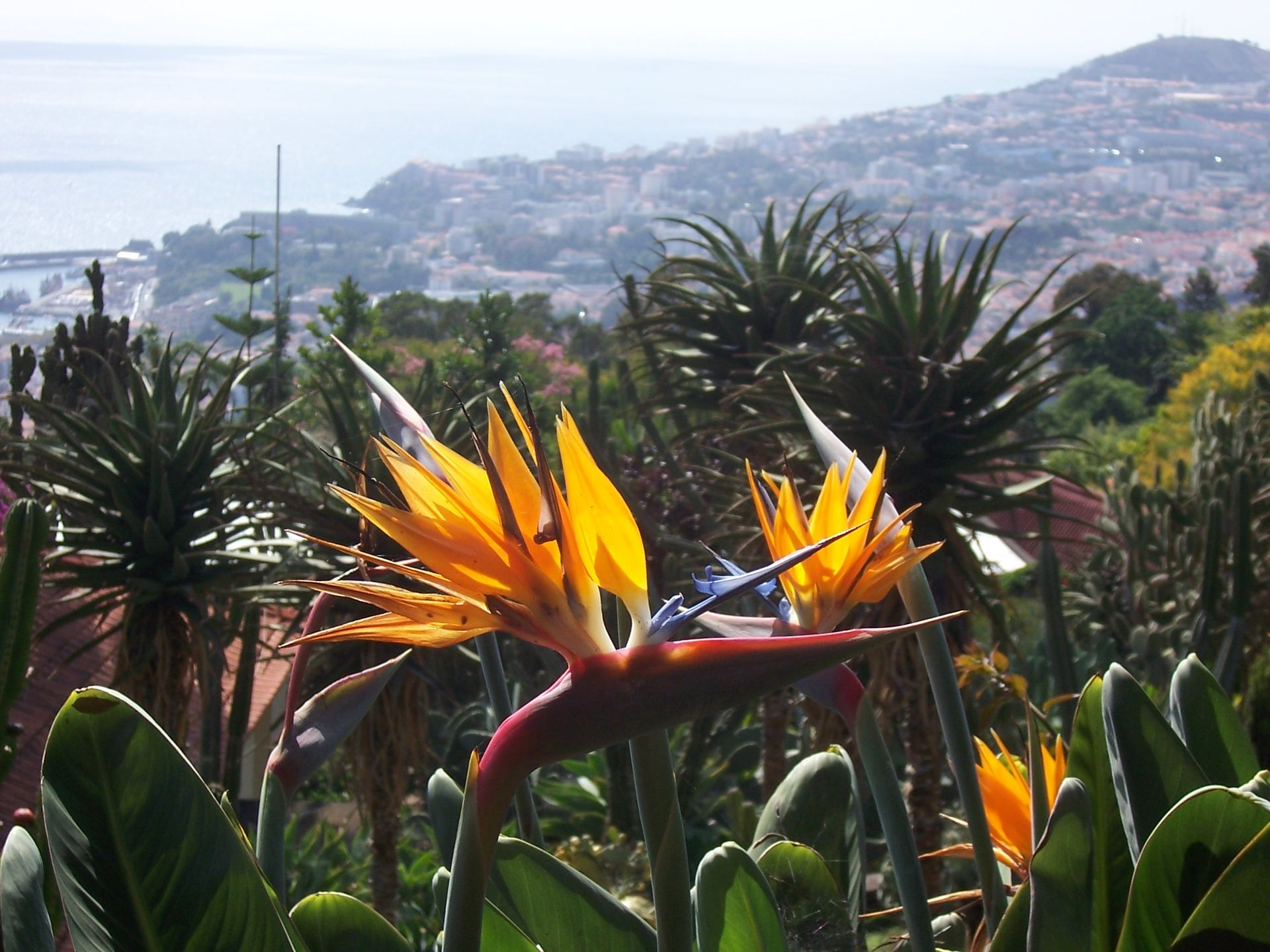 botanicka-zahrada-14