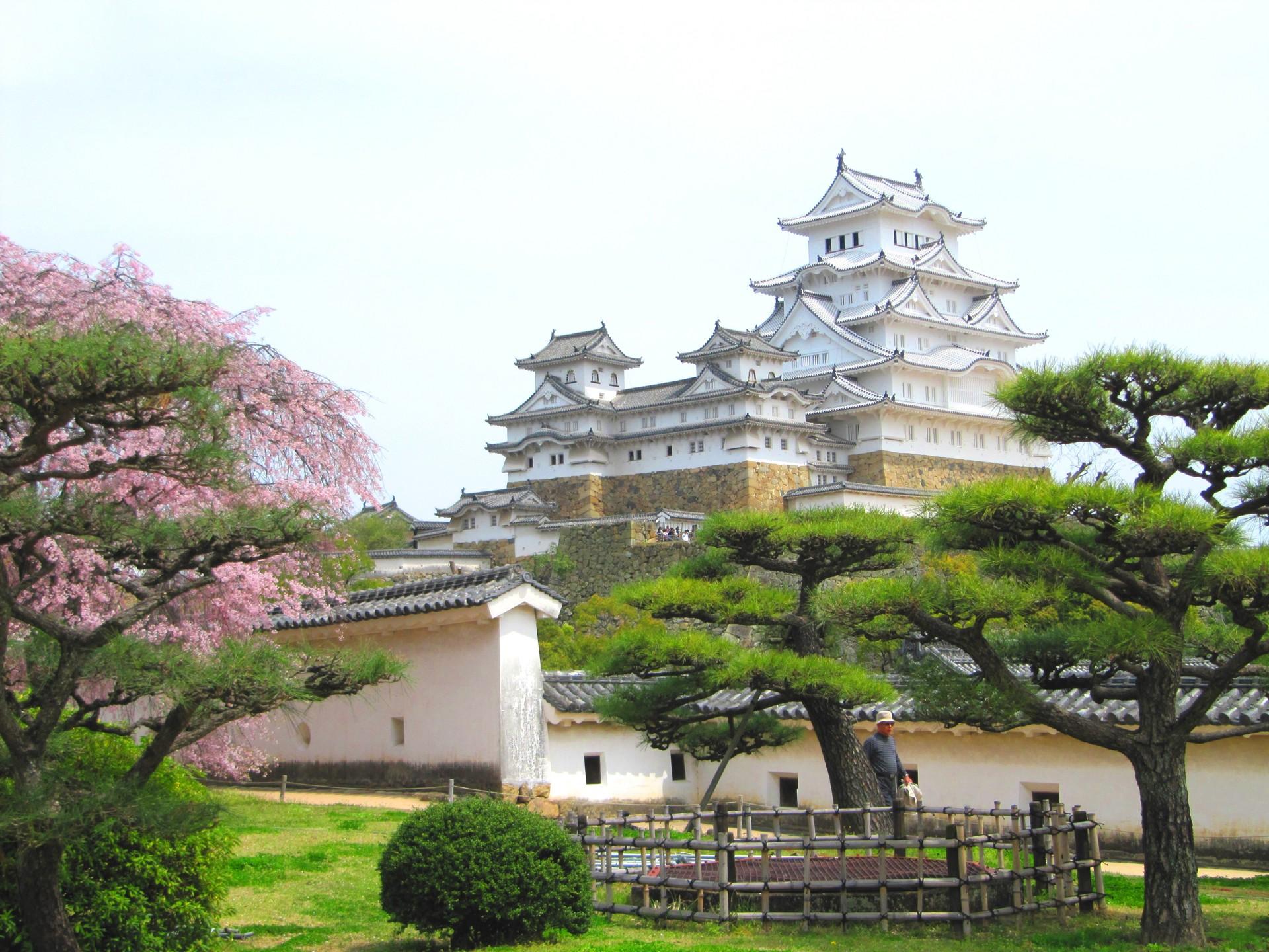 Japonsko 125
