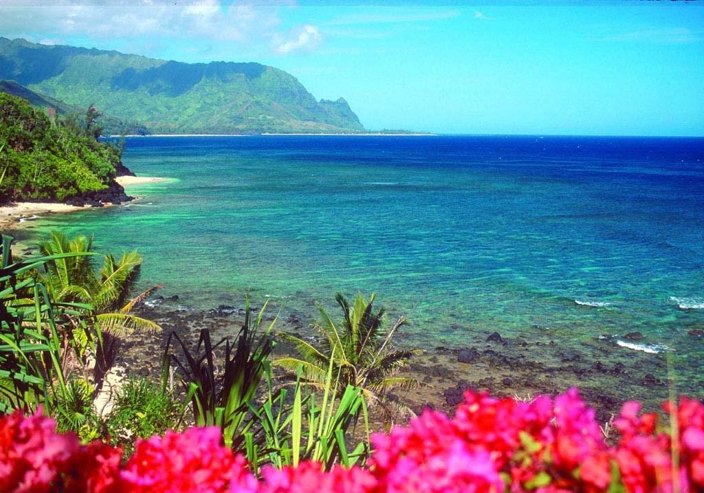 Maui_sightseeing