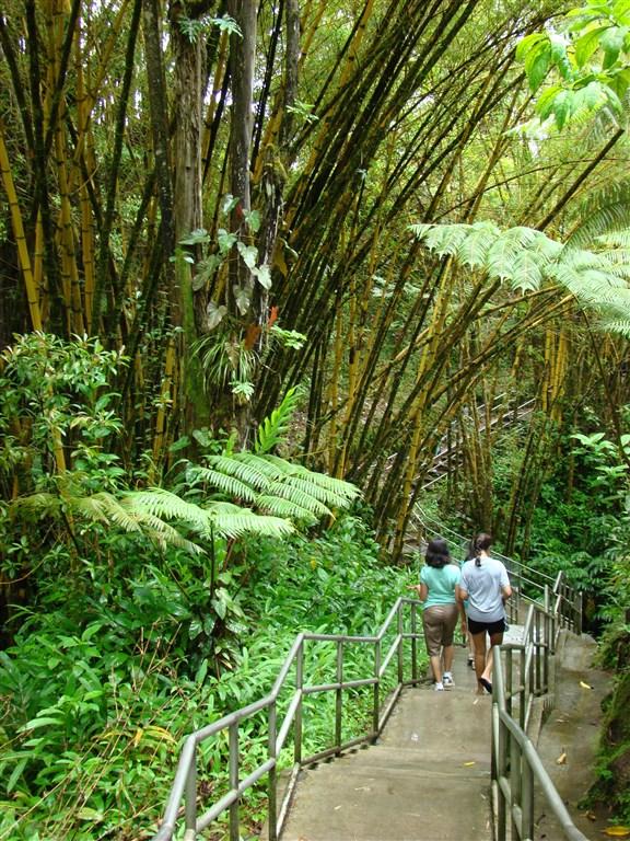 Havaj 2009 082