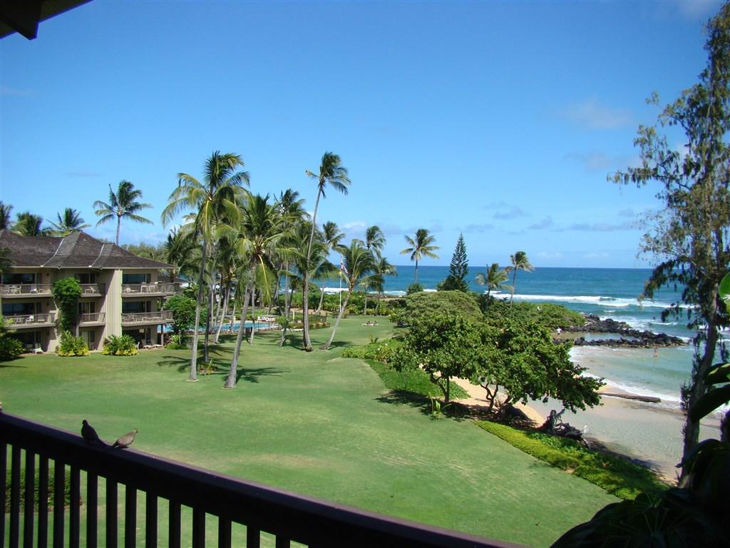 Havaj 2009 272