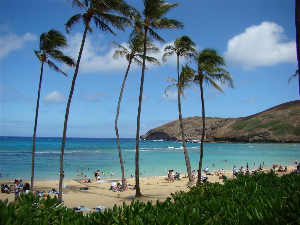 Havaj 2009 409