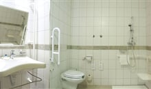 163_17.Aqua handic. bathroom