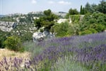 Provence 3