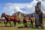 South America. Easter Island. Horses. Statues._shutterstock_1951772571