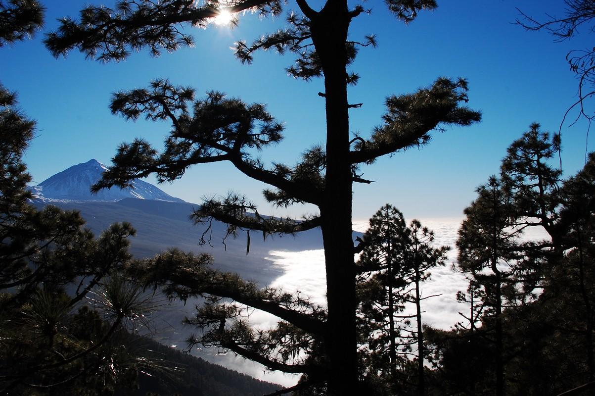 Tenerife © Foto: Honza Haruda, archiv CK Kudrna