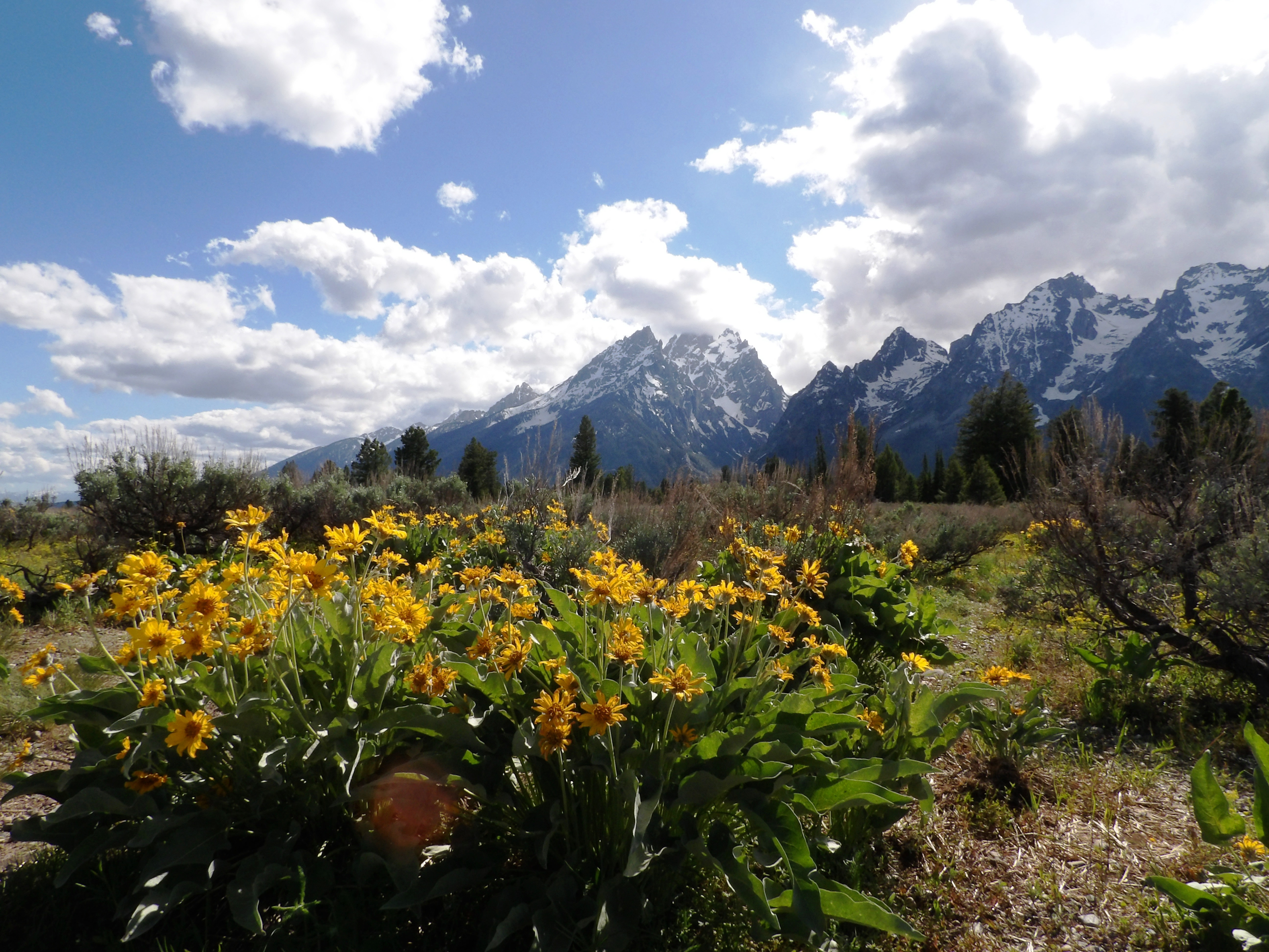 Grand Teton 1