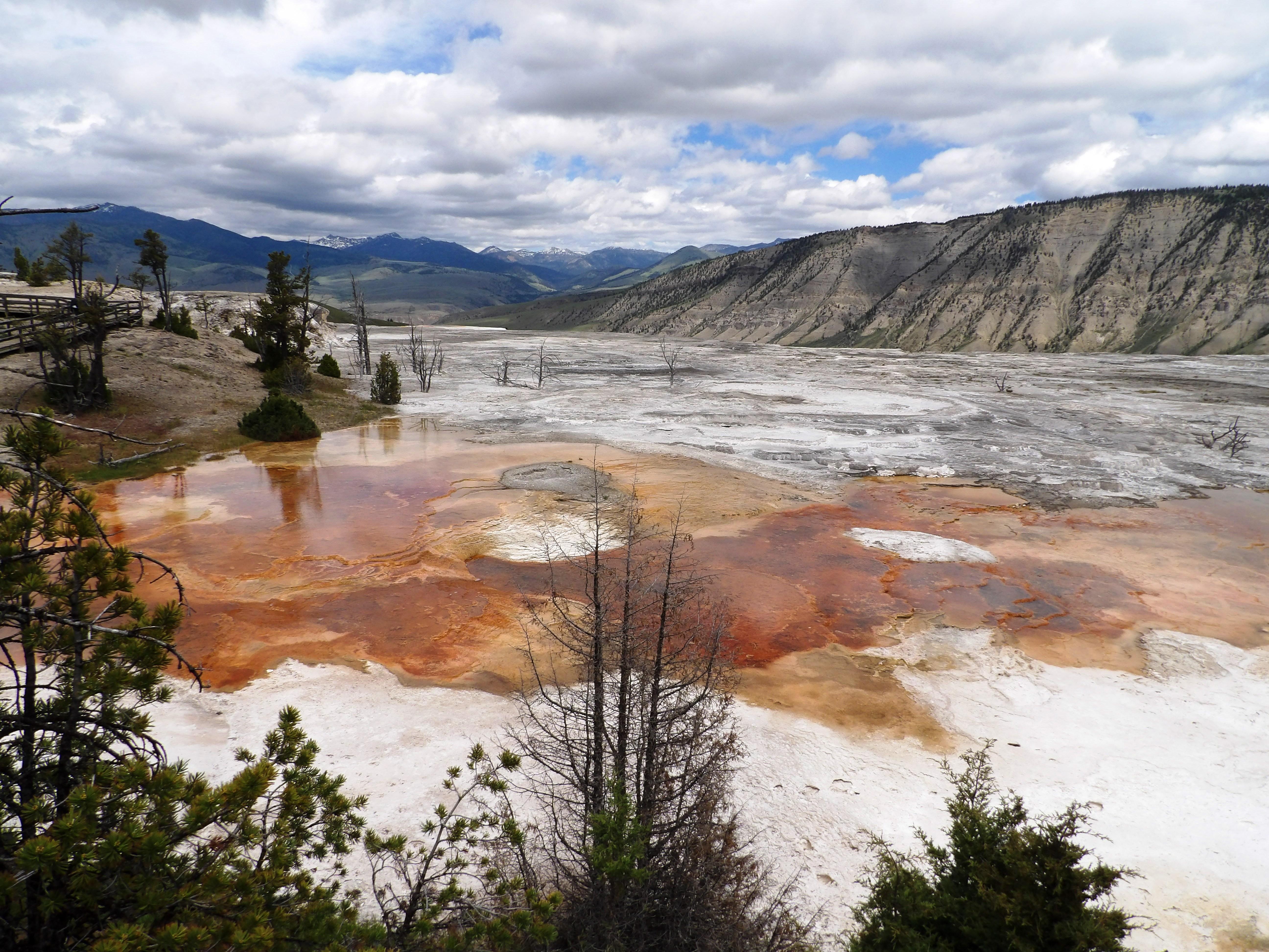Yellowstone 14