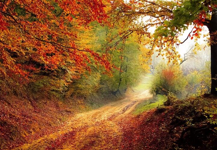 Podzimní Jizerské hory