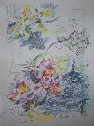 30/07/20 - pencil, coloured pencil
