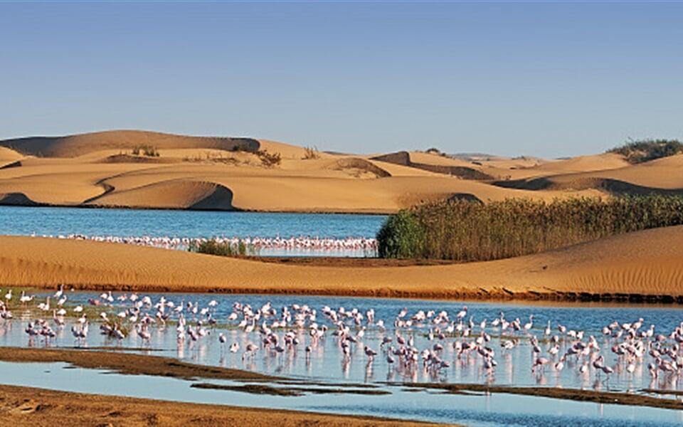 Foto - To nejlepší z Namibie + SAFARI V PARKU ETOSHA + KOČOVNÝ KMEN HIMBA (letecky z Pr