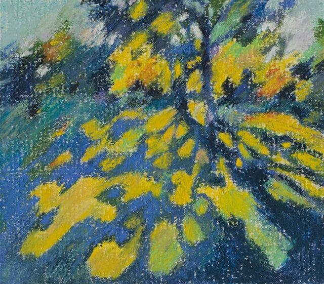 Japanese garden 11/02/21 - soft pastel