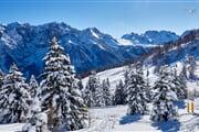 SkiareaCampiglio Folgarida&Marilleva Winter 07