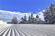 SkiareaCampiglio Folgarida&Marilleva Winter 40