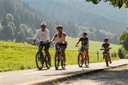 PontedilegnoTonale Bike Ciclabile