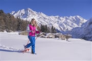 Snowshoes (2)