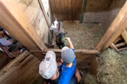PontedilegnoTonale AdamelloCard fattoria capre famiglia