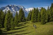 Bike Adamello Presanella Ph M.Cappe