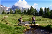 Val di Peio Campo di Comasine Ph  G.Bernardi