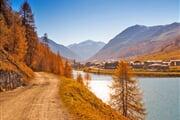 Sentiero Bosc Dal Restel Alpisella Lago