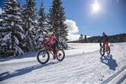 Win fatbike passo coe 2017 Gober (1)