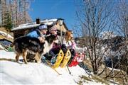 Snowshoes  Consorzio Turistico Marmolada (4)