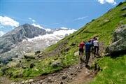 Trekking   © Consorzio turistico Marmolada (5)