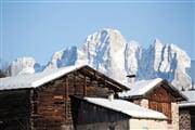 Bellamonte FEDMOD0022