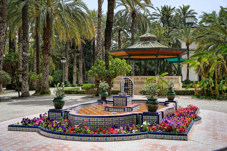Palmový ráj Elche v provincii Alicante