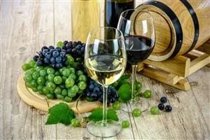 wines 1761613 1920