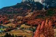 Autumn Credits Ale Zesta