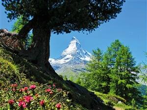 Svycarsko_Matterhorn_03