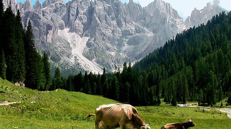 Italie_Dolomity_Val-Venegia
