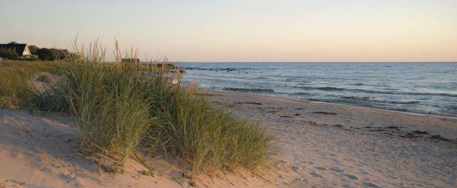 Beach, Gotland, Sweden (6280294439)