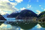 Tracy Arm fjord (3)