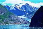 Tracy Arm fjord (5)