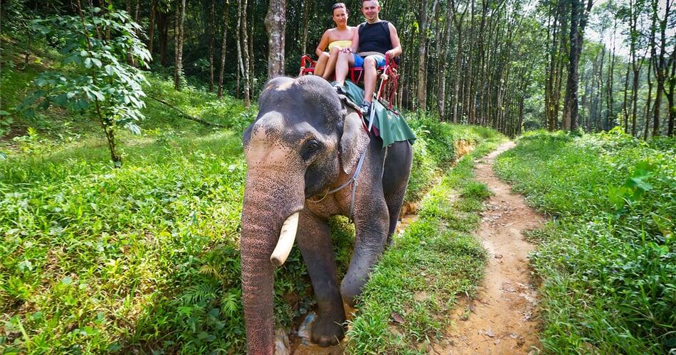 jízda na slonech v NP Khao Sok