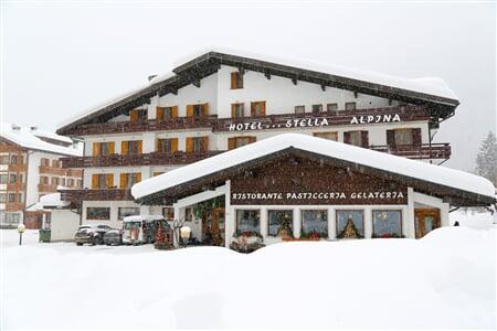 Stella Alpina, Falcade_2018 (1)