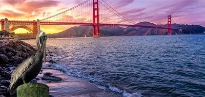 Mosty, které psaly historii