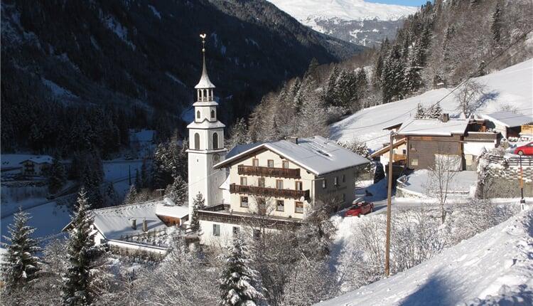 Foto - Pitztal - Alpenrose