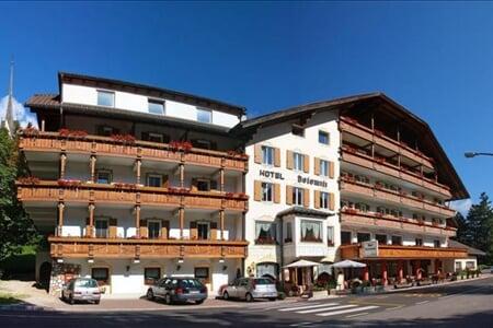Dolomiti Hotel Vigo di Fassa 2019 (9)