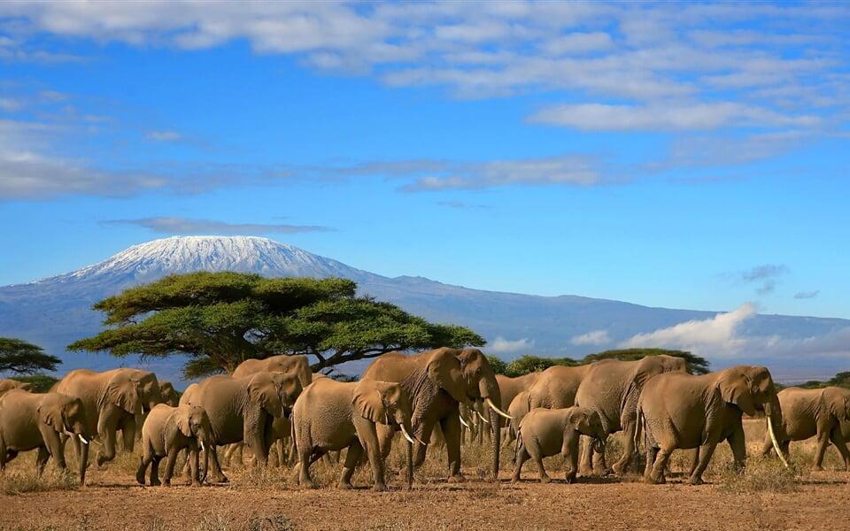 Foto - Keňa - Tanzanie - to nejlepší z východní Afriky