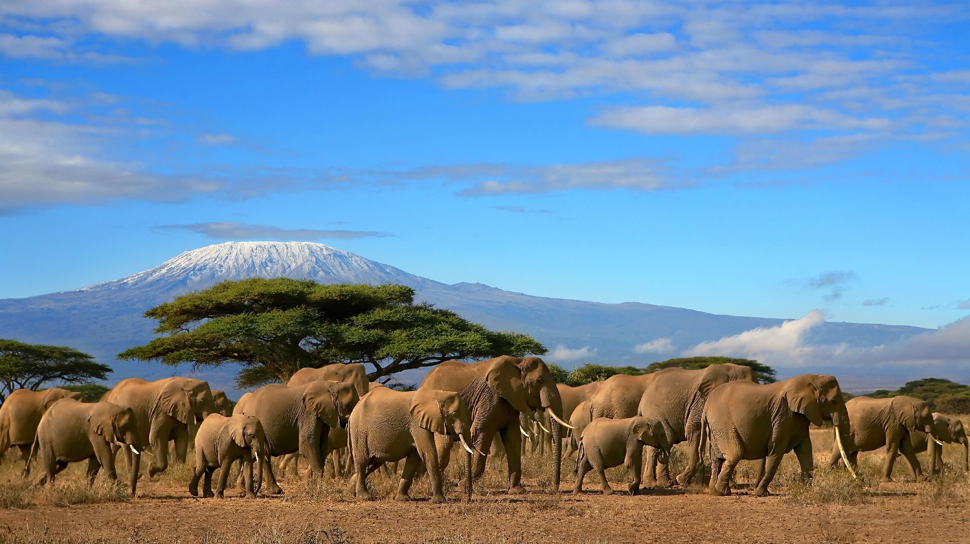 Keňa Keňa Christchurch kancelář připojte