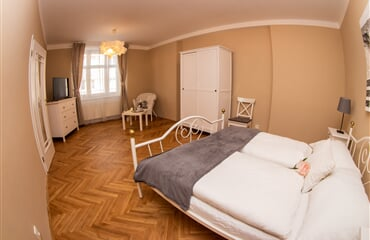 Apartment Tylova 515