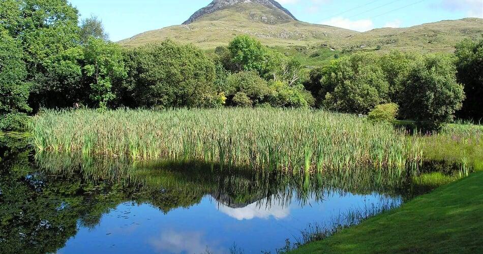 Irsko   Connemara NP 1